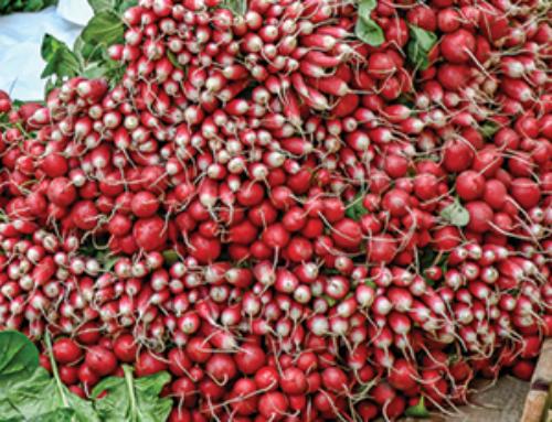 Deux actions pour lutter contre le gaspillage alimentaire le 16 octobre