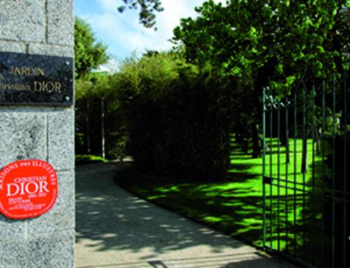 Intervention sanitaire sur des pins du jardin Christian Dior