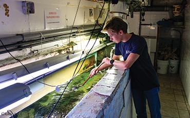 Le lycéen monégasque a nettoyé les 24 aquariums du Roc des Curiosités
