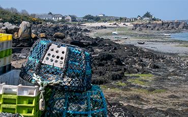 Les îles Chausey intéressent les médias.©Benoit.Croisy